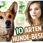 10 Arten von Hunde-Besitzern | Joyce
